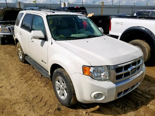 2009 FORD ESCAPE HYB,