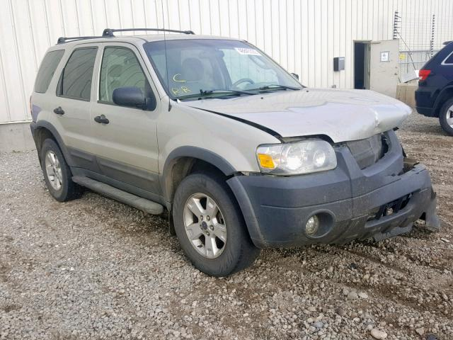 2005 FORD ESCAPE XLT,
