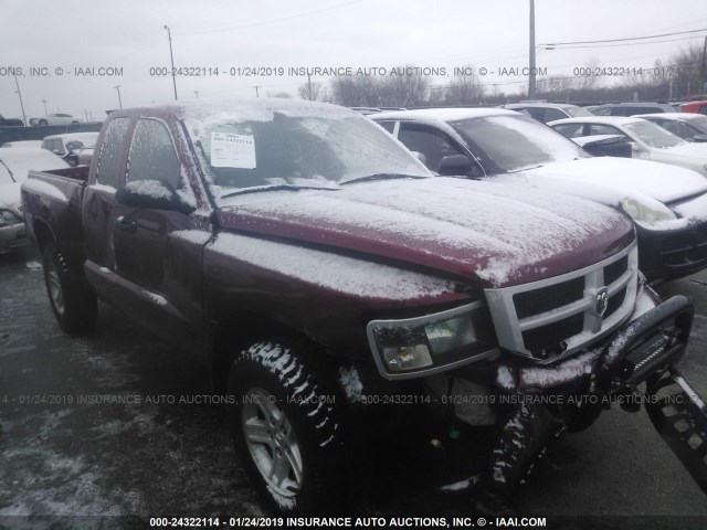 2011 DODGE DAKOTA SLT,
